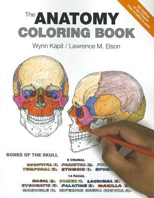 Cheap Textbook Image ISBN: 9780321832016