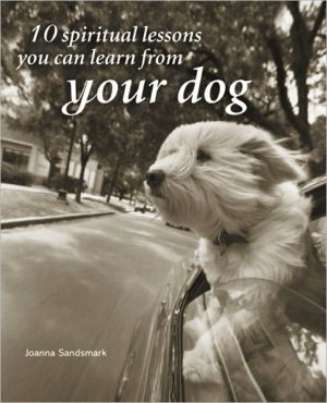 . 10 Spiritual Lessons You Can Learn from Your Dog .