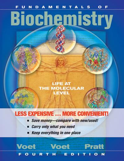 Cheap Textbook Image ISBN: 9781118129180